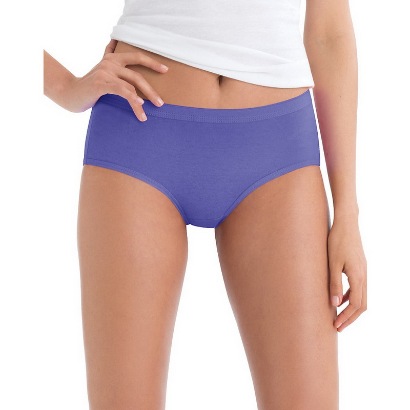 """Hanes """"Hanes PP38AS Women's No Ride Up Low Rise Cotton Briefs 6-Pack - Assorted,8"""" at Sears.com"""